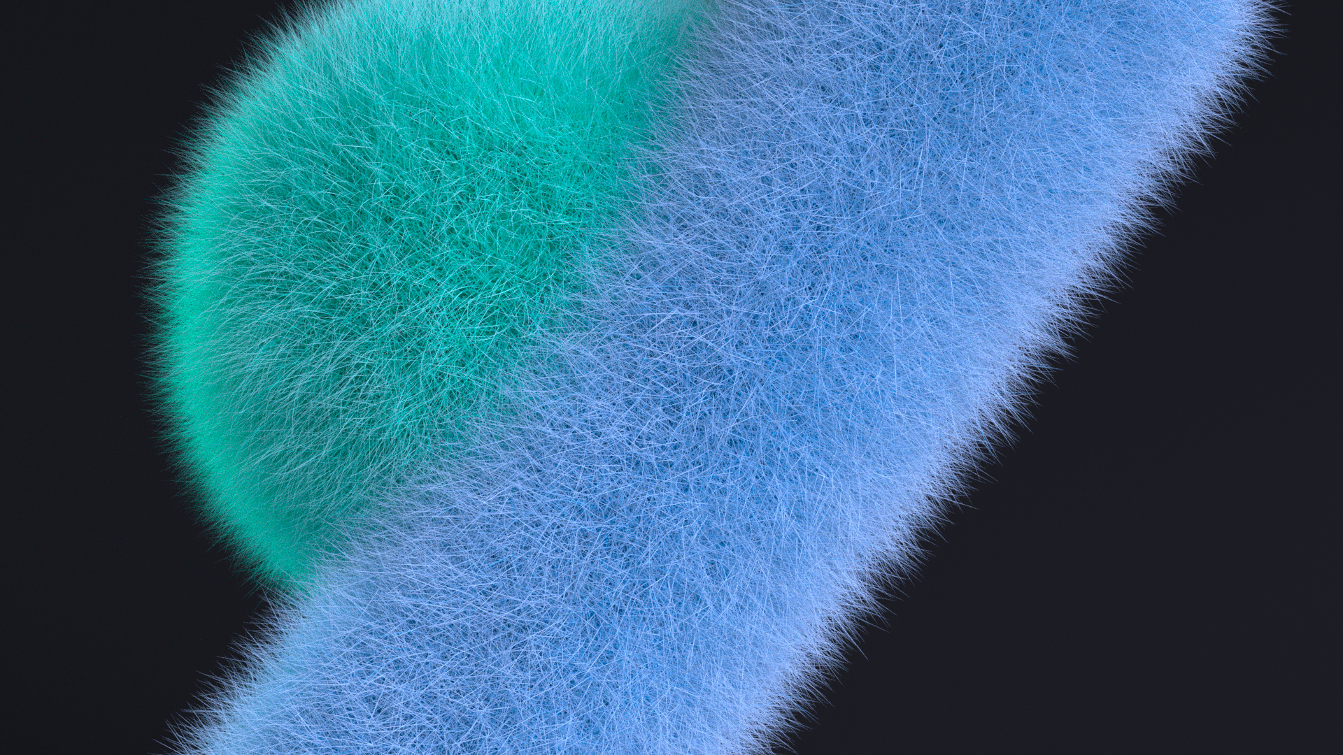 FUR_08Color01_0050 (00000)